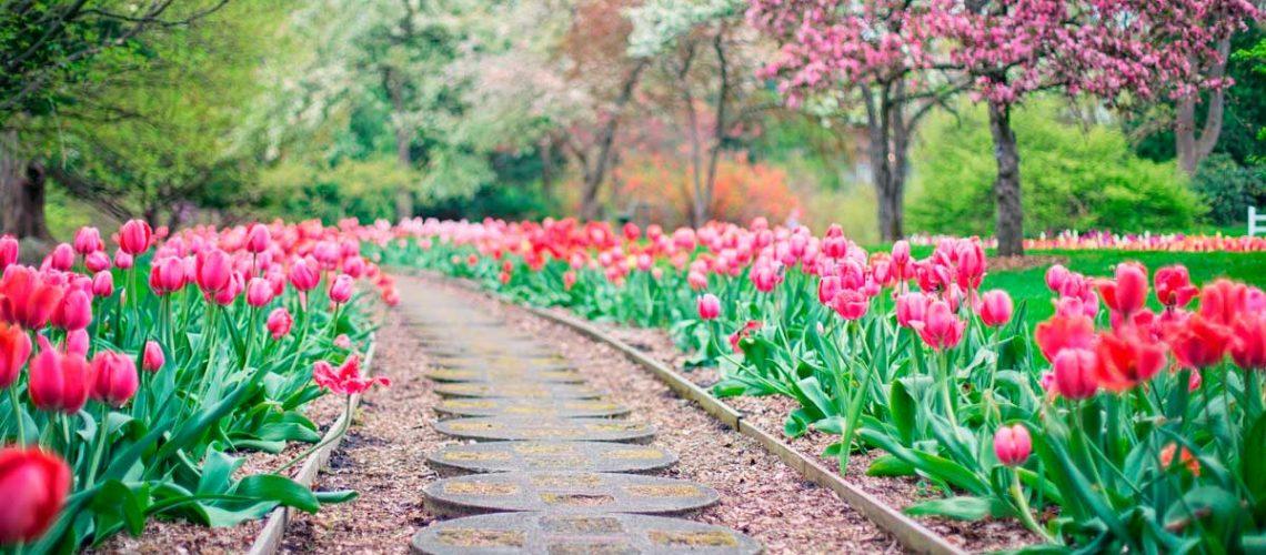 herramientas-para-mantener-jardin